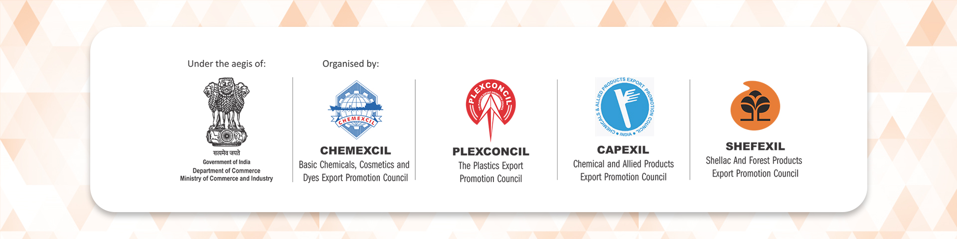 Capindiaexpo 2019 Organised by Plexconcil, Chemexcil, Capexil and Shefexil